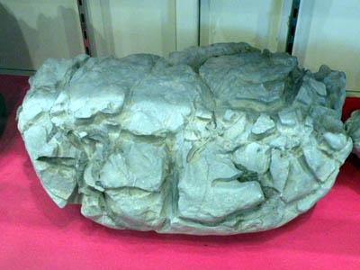 亀甲石.JPG